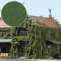 Busch 7342 Vlokken Groen